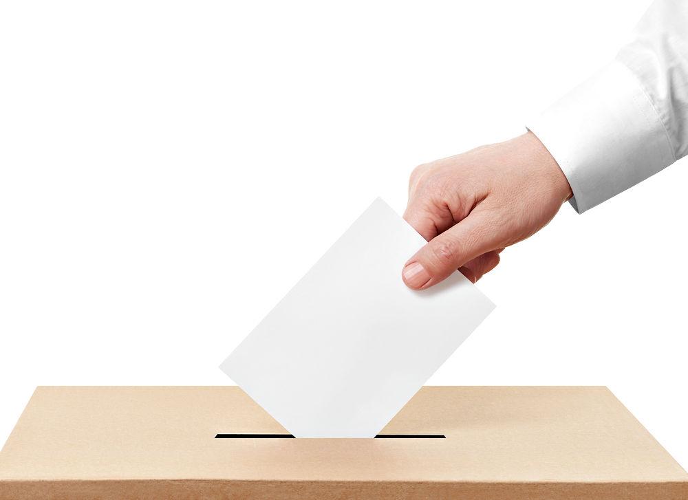 Image result for valg